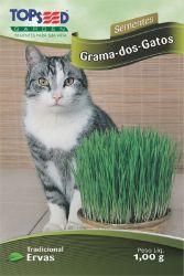 Sementes Grama dos Gatos