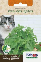 Sementes Erva dos Gatos - Catnip
